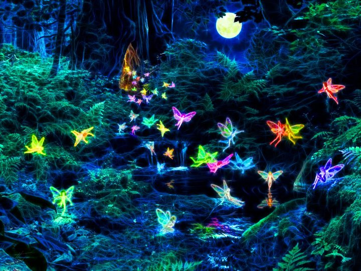 The Fairies from Extraordinary Creatures